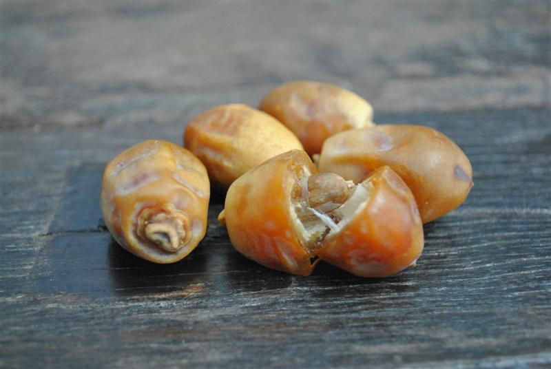 Zahiri Dates by Fruit Maven